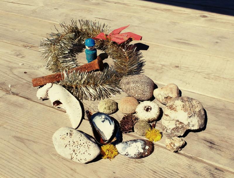 Favoriser l'émergence de l'identité écologique des enfants