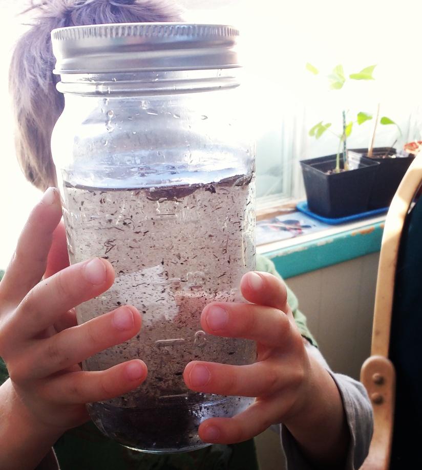 La permaculture du bordel
