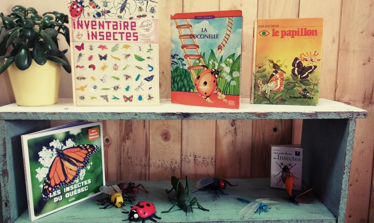 Table de la nature: Les insectes