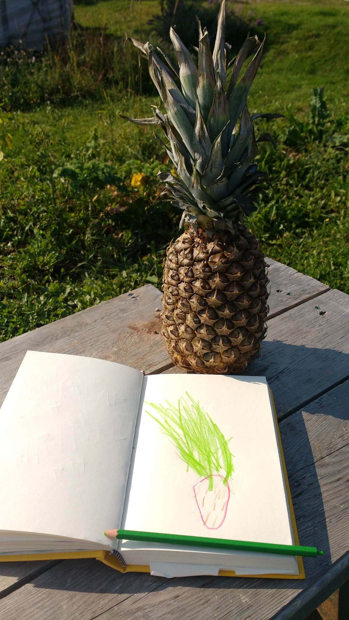 A comme ananas - Semaine 1