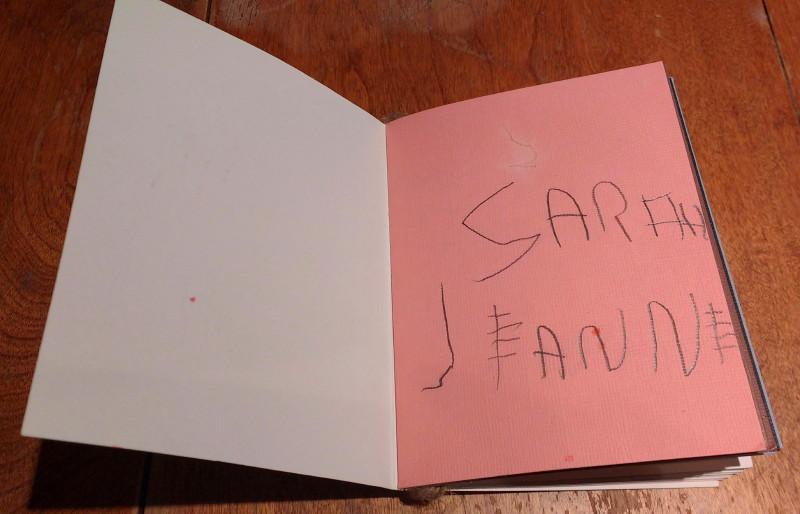 Le roman de Sarah-Jeanne