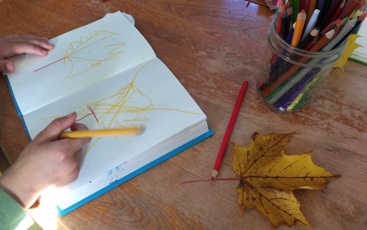 Carnet de la nature -Feuilles d'automne
