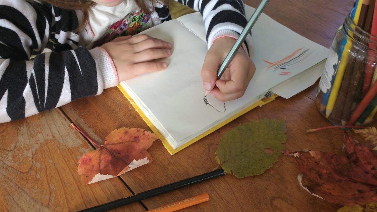 Carnet de la nature - Feuilles d'automne