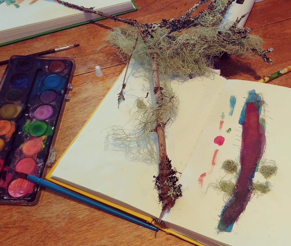 Souvenirs de mousses et de lichens